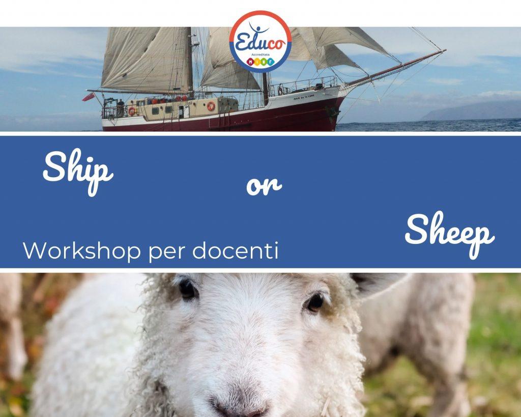 ship or sheep workshop per docenti